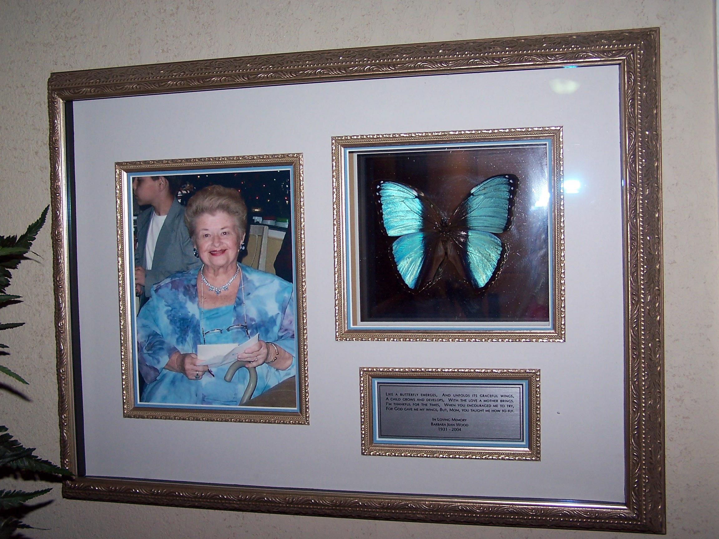 Memorial Shadow Box  sc 1 st  Artgirl & Butterflies | Artgirl Aboutintivar.Com